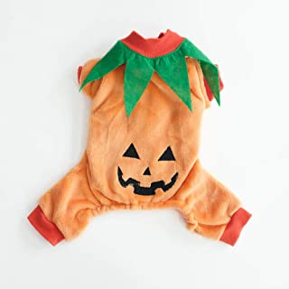 InnoPet Pumpkin Costume Halloween Dog Clothes,Cute Sweater Coat for Small Dogs and Cats,Autumn Winter Warm Jumpsuit Outfit Apparel