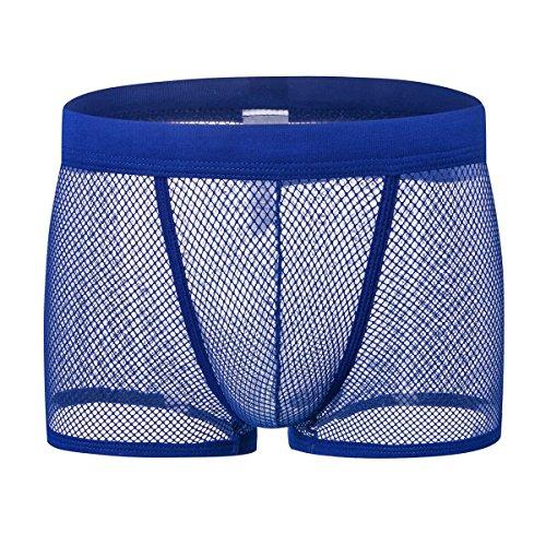 DDSCOLOUR - Calzoncillos tipo bóxer para hombre, malla transparente, ropa interior masculina azul XL