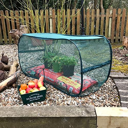 GardenSkill - Copertura per piante con rete di protezione anti-uccelli, per coltivare frutta, fiori e ortaggi, senza pericolo per uccelli e animali, 1,1 x 0,45 x 0,55 m
