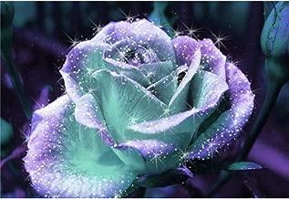 rose diamond painting