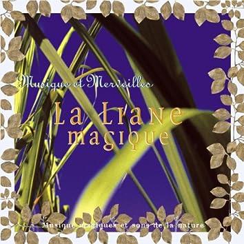 Musique et merveilles: la liane magique