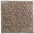 "Smart Squares Walk in The Park 9"" x 9"" Residential Soft Carpet Tiles, Peel and Stick, Easy DIY Installation, Seamless Appearance, Made in USA (Sample, 760 Gemstone)"