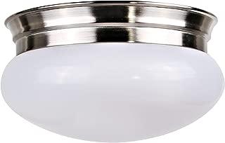 Hykolity 9 Inch 980lm Dimmable Round Flushmount LED Ceiling Light, 100 Watt Equivalent 4000K Neutral White LED Closet Ceiling Light, Brushed Nickel Finish for Living Room, Kitchen, Hallway ETL Listed