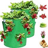 Fragole Sacco per Piantare,2 Pezzi Borsa per Piante 40L/10 Galloni in Feltro con Manico e 8 Fori,Sacchi Piante per Fragole, pomodori e Fiori(Verde)