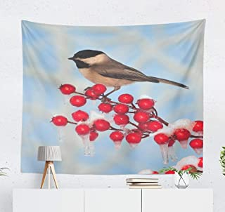 Alricc Wall Hanging Tapestry Black Bird and Blue Sky Snow Christmas Season Crab Wall Tapestry Dorm Home Decor Bedroom Living Room in 60X50 Inches,Black Bird Bird