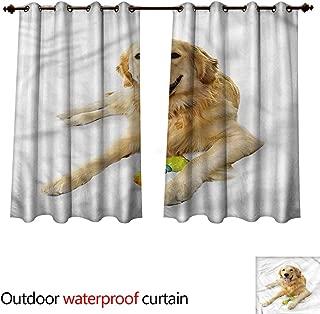 cobeDecor Golden Retriever Home Patio Outdoor Curtain Pet Dog Toy W55 x L45(140cm x 115cm)