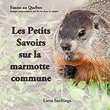 Les Petits Savoirs sur la marmotte commune