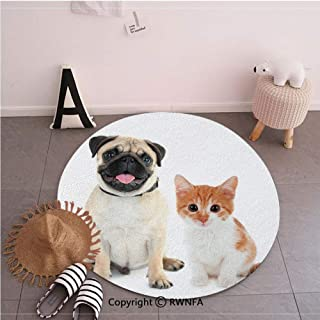 Modern Non-Slip Machine Washable Round Rug,Adorable Kitten and Puppy Photography Cute Animal Fun Young Pets Happy Image Cream Orange White,35.4inches,Living Room Bedroom Bathroom Soft Floor Mat