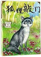 金曾豪精品动物小说//狐狸敲门