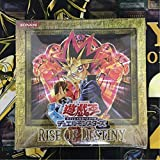 遊戯王 BOX ボックス RISE OF DESTINY ライズオブデスティニー 創世神 等収録