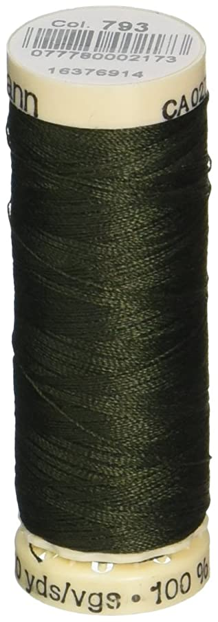 Gutermann Sew-All Thread 110 Yards-Evergreen