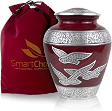 SmartChoice Wings of Freedom Cremation Urn for Human Ashes - Affordable Funeral Urn Adult Urn for Ashes Handcrafted Urn (R...
