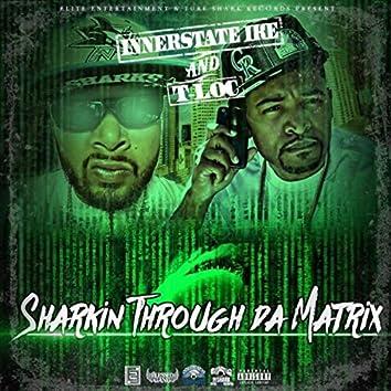 Sharkin Through da Matrix