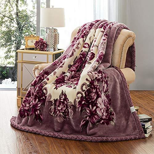 YJJSL Raschel Manta Suministros de Cama Textiles para el hogar Invierno Gruesa Capa Doble Siesta de Siesta Caliente (Size : 200 * 240cm)