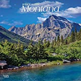 Montana Wild & Scenic 2022 12 x 12 Inch Monthly Square Wall Calendar, USA United States of America Rocky Mountains State Nature