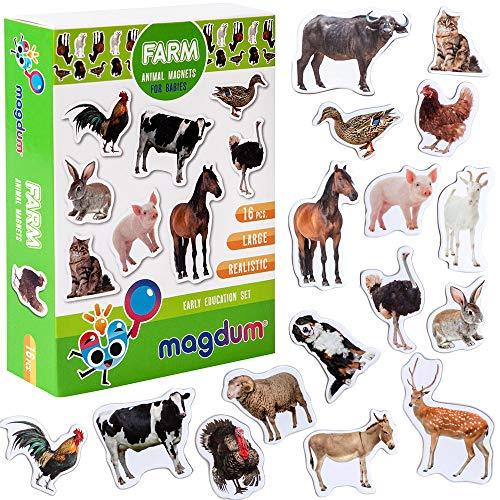 MAGDUM Bauernhof Tiere Foto Set - echte GROßE Kühlschrank Magnete für Kleinkinder- magnetisches Theater Lernspielzeug – Spiele für 3 Jährige – Magnet Spiele für Kinder - Spielzeug Tiere - Magnet Set