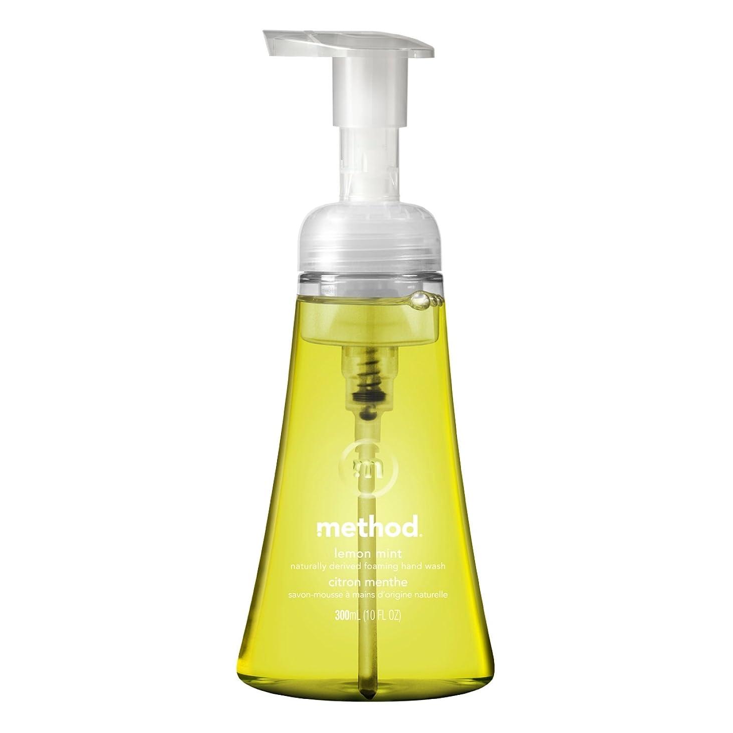 記述するトロイの木馬用量メソッド ハンドソープ 泡タイプ レモンミント 本体300ml