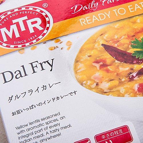 レトルトカレー MTR ダルフライカレー 300g ×10個 豆カレー 業務用