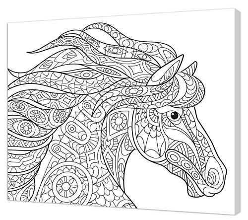 Pintcolor - 7162.0 - Cadre avec Toile imprimée à colorier, Bois de Sapin et Coton, Blanc/Noir, 50 x 40 x 3,5 cm