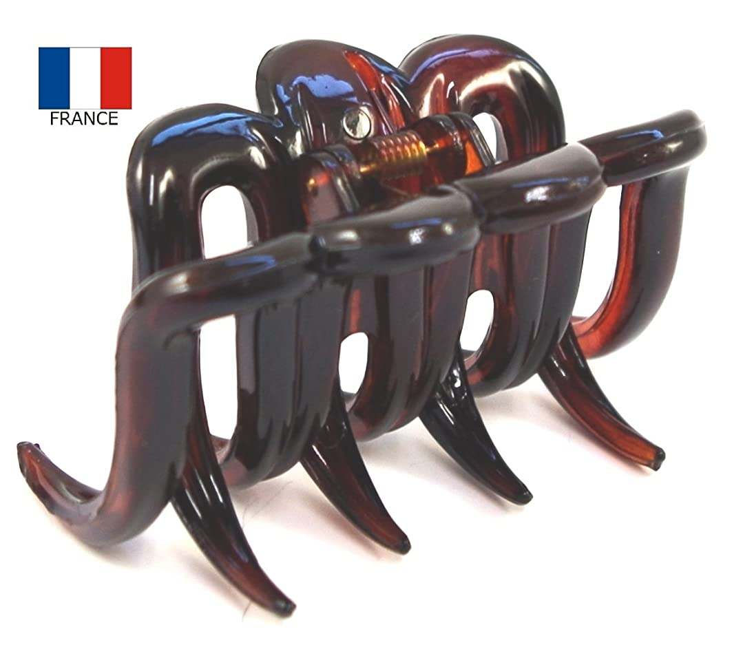 冒険記念碑的なコーチフランス製バンスクリップ【ヘアアクセサリー】NO.22555 (ベッコウ)