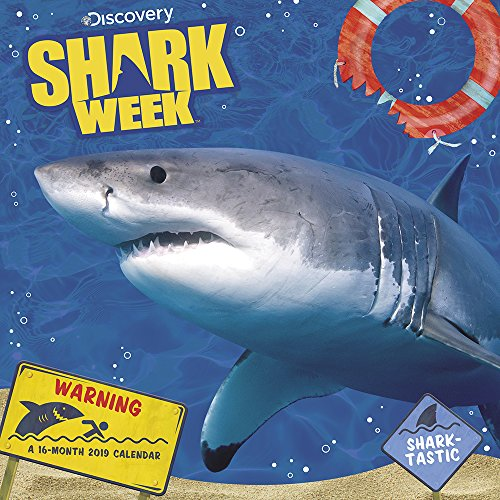 Price comparison product image Shark Week Wall Calendar (2019)