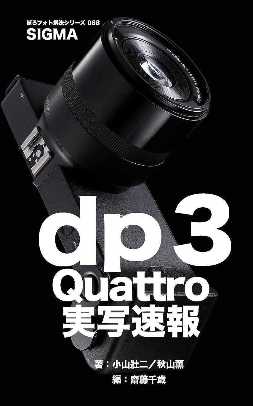 氷ぺディカブ痛みぼろフォト解決シリーズ068 SIGMA dp3 Quattro 実写速報