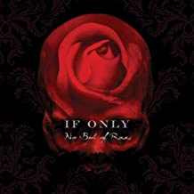 No Bed of Roses -Deluxe-