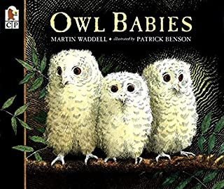 Best owls for babies Reviews