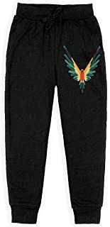 logan paul jogger pants