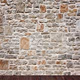 AOFOTO 6x6ft Grunge Brick Stone Wall Backdrop Vintage Shabby Texture Photography Background Kid Girl Boy Lovers Baby Portrait Nostalgia Photo Shoot Studio Props Video Wallpaper