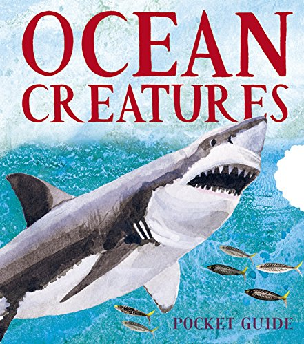 Ocean Creatures: A 3D Pocket Guide (Panorama Pops)