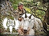Classics - British Columbia Mountain Goat Hunt