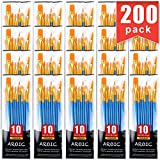 Painting Brush Suit, 20 Packs /200 Pieces, Nylon Brush Head, Suitable for Oil and Watercol...