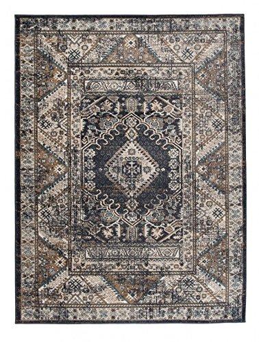 We Love Rugs - Carpeto Großer traditioneller Perserteppich - Grau Anthrazit - Perser Keshan Orientalisches Muster - Ferahan- Ziegler Ornamente - Top Qualität Pflegeleicht Teppich EMIRAT 200 x 300 cm