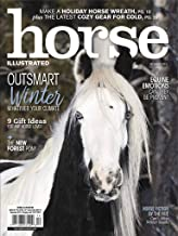 horse illustrated subscription