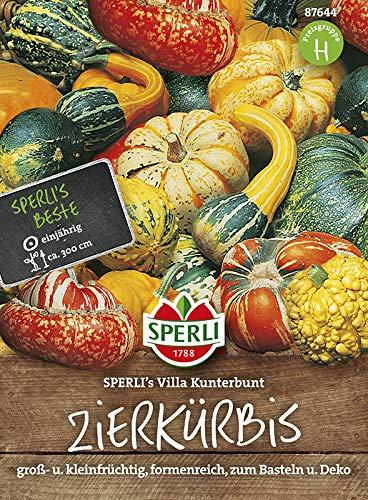 Kürbissamen - Zierkürbis SPERLI's Villa Kunterbunt von Sperli-Samen