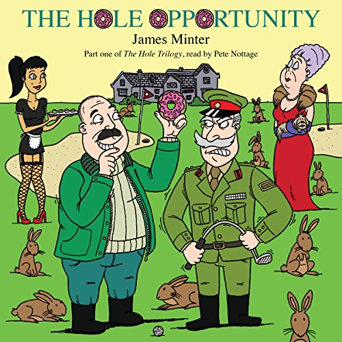 The Hole Opportunity audiobook cover art