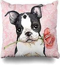 Suesoso Decorative Pillows Case 16 x 16 Inch Valentine Rose Boston Terrier Throw Pillowcover Cushion Decorative Home Decor Garden Sofa Bed Car