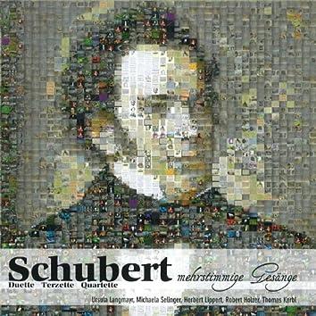 Mehrstimmige Gesänge - Duette, Terzette, Quartette