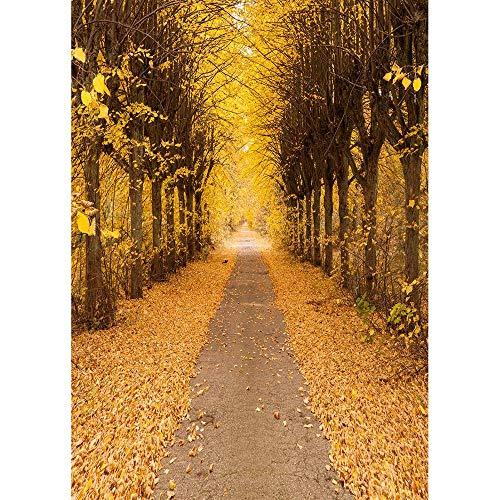 Fondos de fotografía de Bosque de otoño Fondo de fotografía de Puente de Madera Impresora de Tela de Vinilo 3D para Foto de Estudio A9 9x6ft / 2,7x1,8 m
