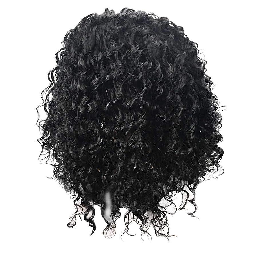 Human Hair Wigs Brazilian Virgin Hair Curly Wig Short Curly Hair Wigs for Black Women (Black)