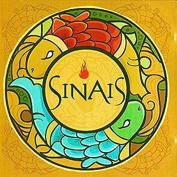 Sinais (Ao Vivo)