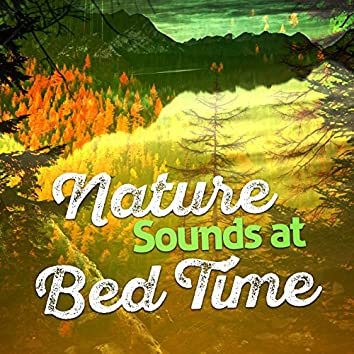 Nature Sounds at Bed Time