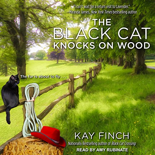 The Black Cat Knocks on Wood audiobook cover art