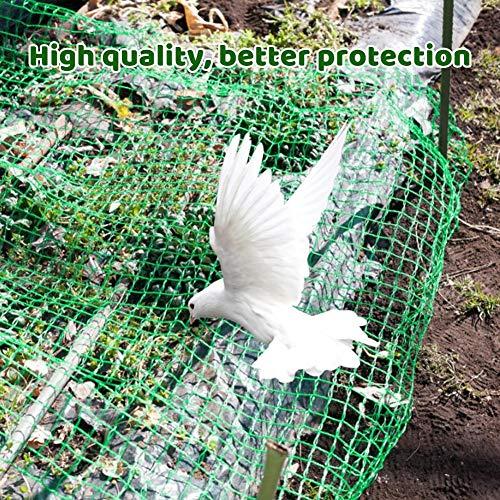 Chuanfeng Premium Vogelschutznetz Taubennetz Obstbaumnetz Gartennetz Zum Schutz Vor Vögeln, 2x10m 4x10m