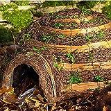 Wildlife World Maison pour hérisson en Forme d'igloo