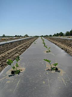 BioDegradable Plastic Mulch Film - Black - Eco-One OXO - 4 ft. X 600 ft. - .5 Mil Thick - By Growers's Solution