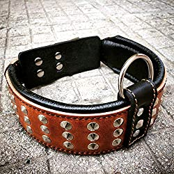 Bestia Genuine Leather Dog Collar with Studs and Soft Leather Cushion. Wide. Durable. Longlasting. Padded