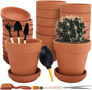 small terracotta pots and saucers