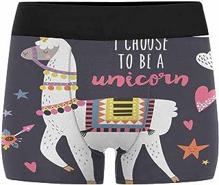 Boxer Briefs Men's Underwear Cute Dinosaurs (XS-3XL)